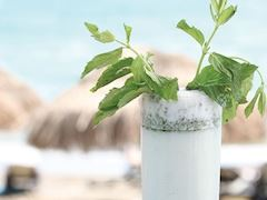 https://lezzet.blob.core.windows.net/images-small-recipe/ayran_mojito-a878068c-6770-48d5-9631-e1207ff3ce4c.jpg