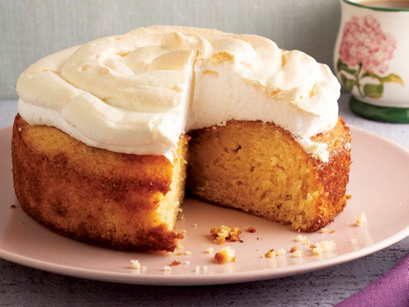 Büyük bezeli misafir keki