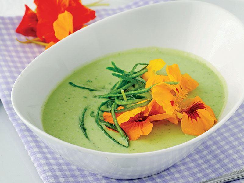 Viola Çiçekli Soğuk Avokado Çorbası