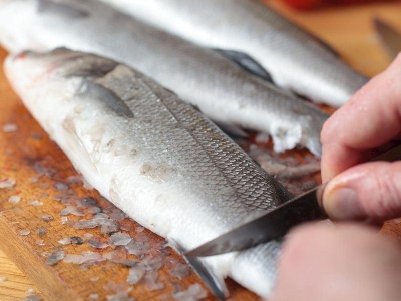 Levrek Nasıl Temizlenir? Levrek Balığı Ayıklama Teknikleri