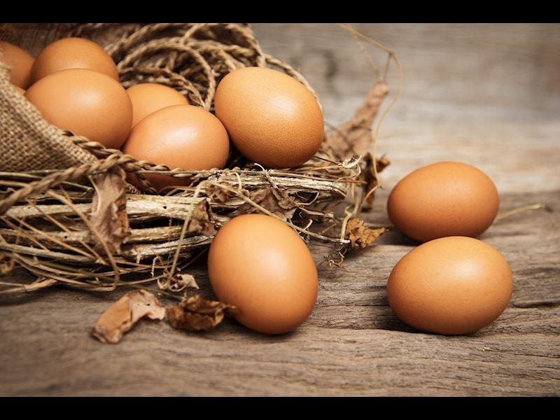 Yumurta Üzerindeki Kodlar: Yumurtanın Kalitesi Nasıl Anlaşılır?